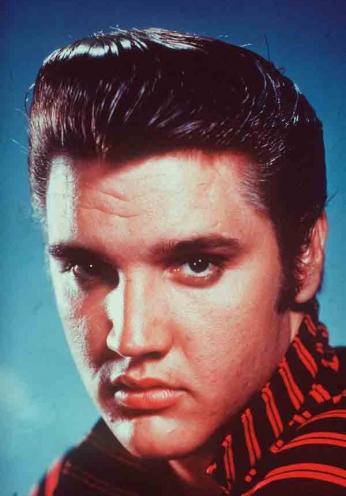 Elvis Presley - Portrait Color